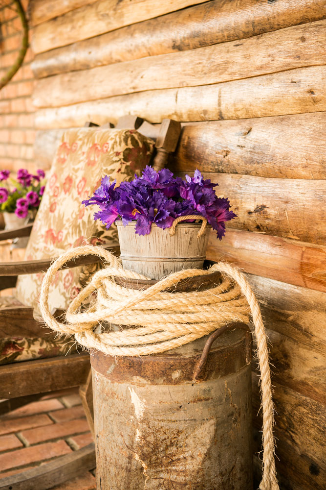 jardim ideias baratas: jardim ideias criativas decoração jardim dicas baratas para